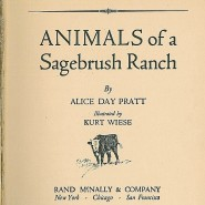 Animals of a Sagebrush Ranch